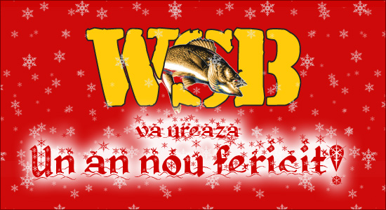 WSB va ureaza un an nou fericit!